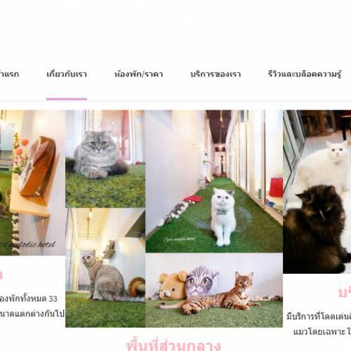 CMS Website Design & Development Portfolio For Cat Hotel